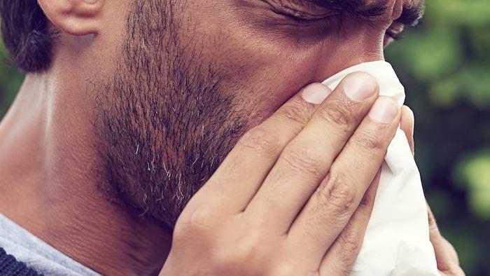 Allergivaccination ved sværhøfeber